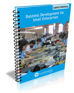 Business-Development-for-Small-Enterprises